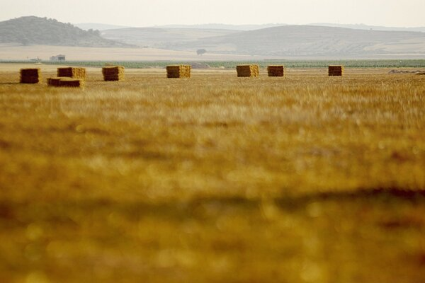 Straw Bales, La Mancha, Spain
